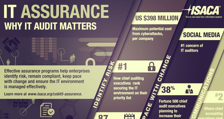 Information System Audit and Assurance Standards